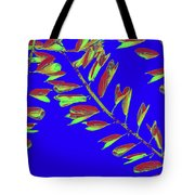 Crossing Branches10 Tote Bag