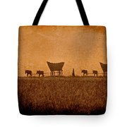 Crossing Kansas Tote Bag