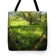 Crossing Paths Tote Bag