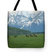 Crossing The Field Tote Bag