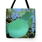 Crossing The Lily Pond Outback Nubmer Two Square Tote Bag