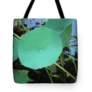Crossing The Lily Pond Outback Number One Tote Bag