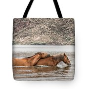 Crossing The River Tote Bag