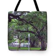 Crossing Trees Tote Bag