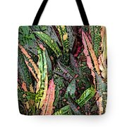 Croton 3 Tote Bag by Eikoni Images