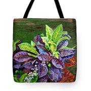 Crotons 2 Tote Bag