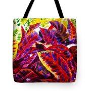Crotons Sunlit 1 Tote Bag