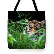 Crouching Tiger Hidden Cameraman Tote Bag