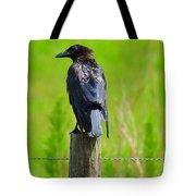 Crow 5 Tote Bag
