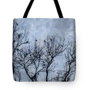 Crow Counting  Tote Bag