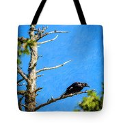 Crow In An Old Tree Tote Bag