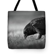 Crow In Grass Tote Bag