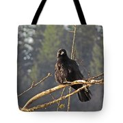 Crow Morning  Tote Bag