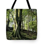 Crow Nest Woods Tote Bag