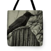 Crow Perched On A Old Column In Rain Tote Bag