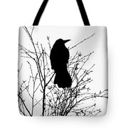 Crow Rook Perched In A Tree With Pare Branches In Winter Tote Bag