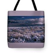 Crowley Lake Tote Bag