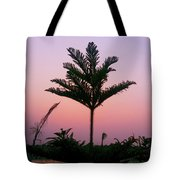 Crown In Pink Sky Tote Bag