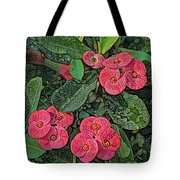 Crown Of Thorns Delight Tote Bag