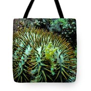 Crown Of Thorns In Pohnpei Tote Bag