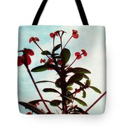 Crown Of Thorns Tote Bag by Shawna Rowe
