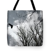 Crows In Cottonwoods Tote Bag