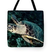 Cruising Turtle Tote Bag