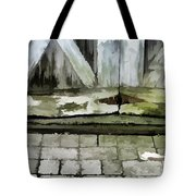 Crumbling Old Door Tote Bag