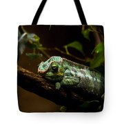 Crummy Day Tote Bag