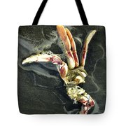 Crustacean On The Shore Tote Bag