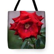 Crying Rose Tote Bag