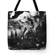 Cryptorchid Tote Bag