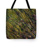 Crystal Clear Waters Tote Bag