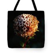 Crystal  Dawn  Tote Bag