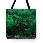 Crystal River Tote Bag