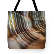 Crystals And Stones Shell 4721 Tote Bag