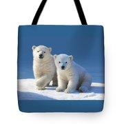 Cub Cakes Tote Bag