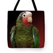 Cuban Amazon Parrot Tote Bag