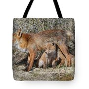Cubs Drinking Tote Bag