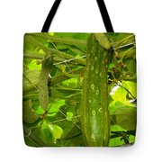 Cucumber On Tree In The Garden 1 Tote Bag
