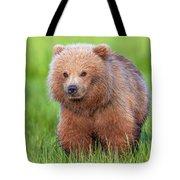Cuddly Bear Cub Tote Bag
