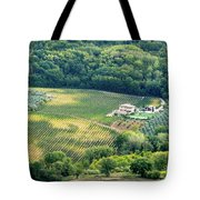 Cultivated Vineyards Tuscany  Italy Tote Bag
