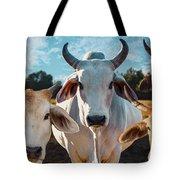 Cupcake Cows Tote Bag
