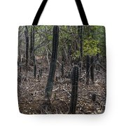 Curacao - Blooming Cacti In The Forest Tote Bag