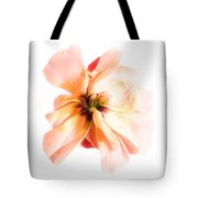 Curb Appeal Tote Bag