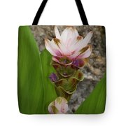 Curcuma Light Pink Tote Bag