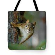 Curious Alaskan Red Squirrel Tote Bag