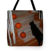 Curious Black Cat Tote Bag