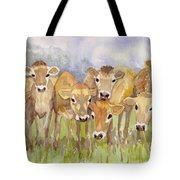 Curious Calves Tote Bag