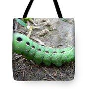 Curious Caterpillar Tote Bag